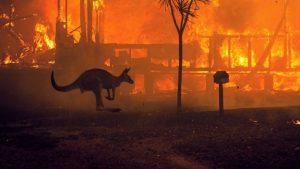 Australian Fires Ignite Climate Activism