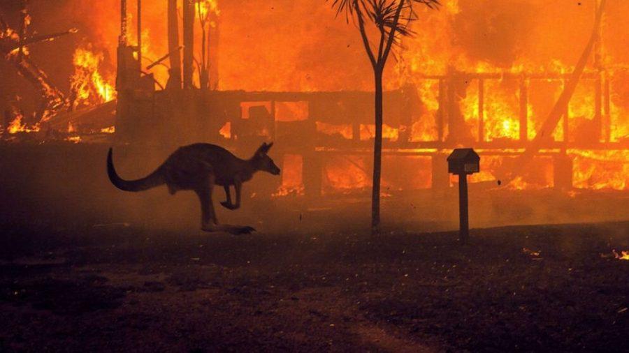 Australian+Fires+Ignite+Climate+Activism