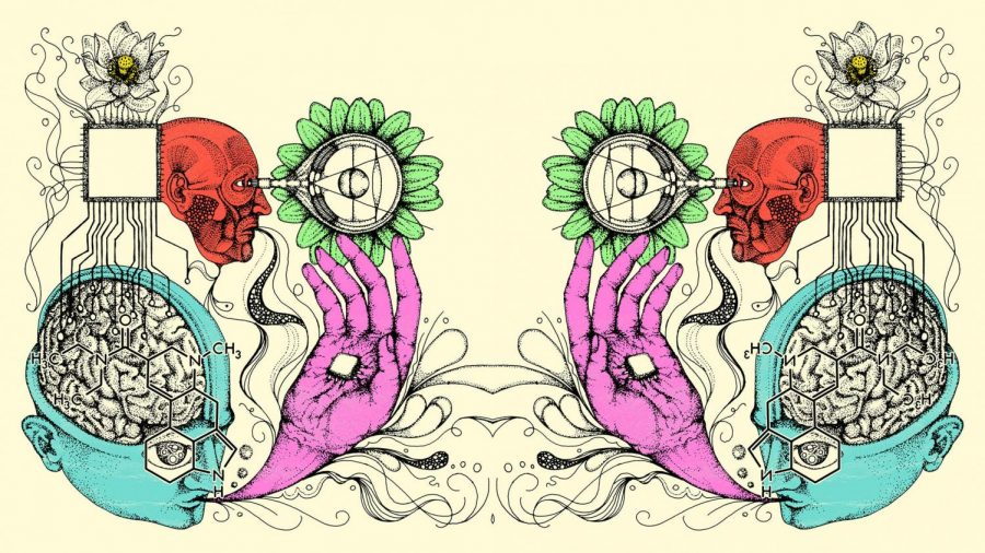 The Effects of LSD on the Brain
