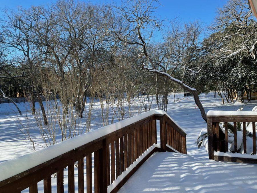 Siona+Snow+Photo+%231